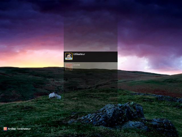Logon Screen Sheep